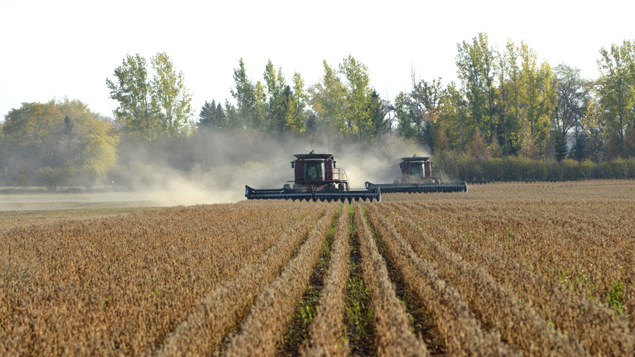 machinery harvesting soybeans