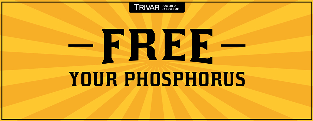 Free Your Phosphorus - Trivar, powered by Levesol.