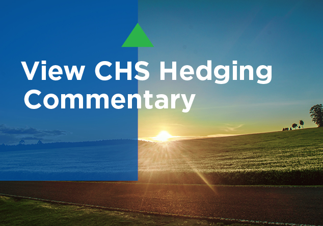 View CHS Hedging Commentary